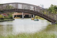 Comprehensive Park