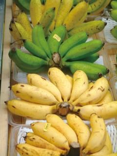 shima banana