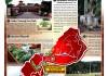 東村_0313